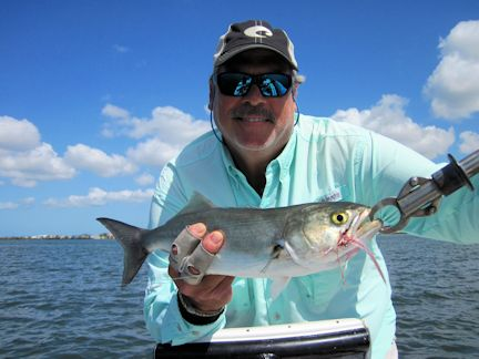 Weekly fishing report snookfinaddict for Weekly fishing report mi