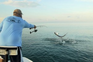Cliff Ondercin, from Sarasota, FL, jumps a tarpon while fishing with Capt. Rick Grassett in a previous June.