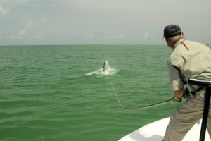 Frank Zaffino, from Rochester, NY, battles a tarpon on fly tackle while fishing with Capt. Rick Grassett in a previous June.