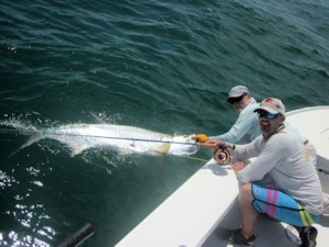 Jeb Mulock, from Bradenton, FL, caught and released his first tarpon on a fly in a previous June while fishing with Capt. Rick Grassett.