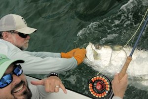 Jeb Mulock, from Bradenton, FL, caught and released this one on a fly while fishing the coastal gulf with Capt. Rick Grassett in July 2016.