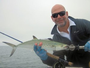 Massimo Giardina, from Switzerland, had good action catching and releasing Spanish mackerel on flies while fishing the coastal gulf in Sarasota with Capt. Rick Grassett.