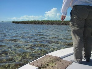The vast flats of South Andros are rich with bonefish!