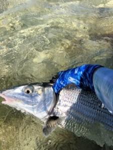 """John's 33"""", 14-lb bonefish."""