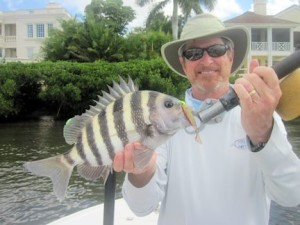 Tom Sprague, from MA, with a sheepshead caught and released on a CAL jig with a shad tail while fishing Little Sarasota Bay with Capt. Rick Grassett.