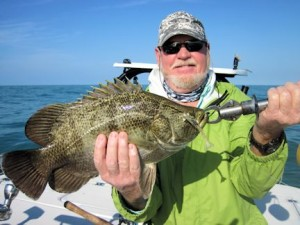 Shane Nichols, from MA, caught and released this tripletail on a DOA Shrimp while fishing the coastal gulf with Capt. Rick Grassett in a previous March.